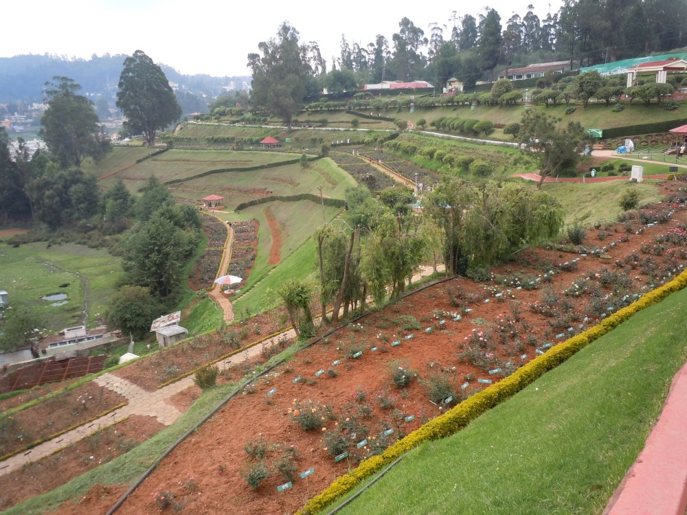 Ooty - Queen of Hill Stations (4/6)