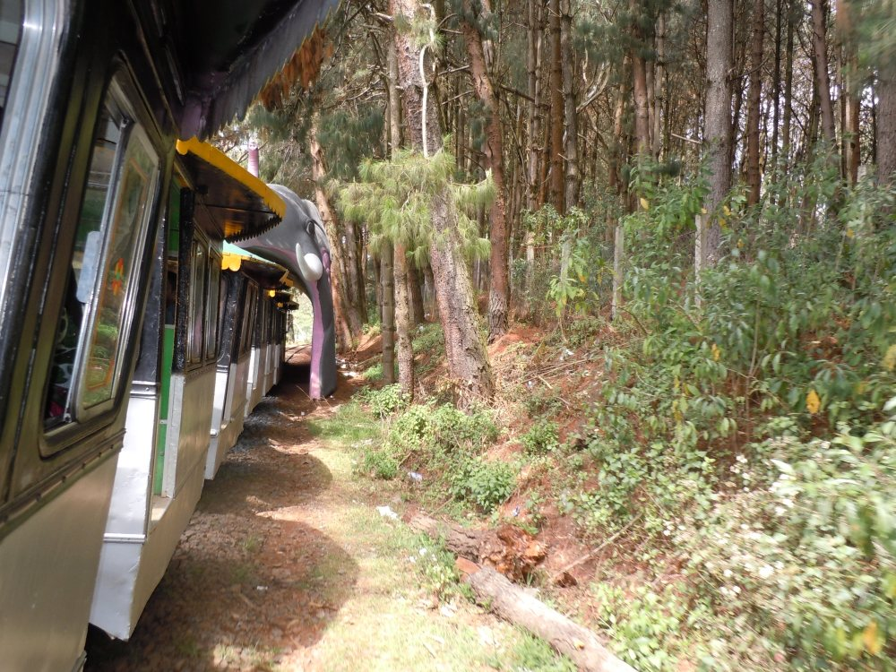 Ooty - Queen of Hill Stations (3/6)